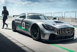 Mercedes-AMG GT4 Bemutató