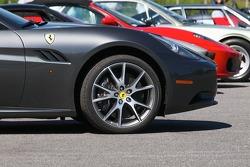 Beautiful Ferraris in the paddock