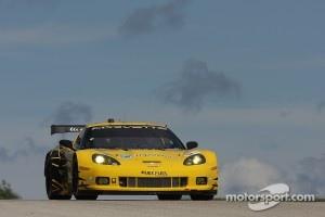 #4 Corvette Racing Chevrolet Corvette C6 ZR1: Oliver Gavin