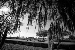 #11 JDX Racing Porsche 911 GT3 Cup: Mike Hedlund, Jan Heylen, Jon Fogarty, #6 Muscle Milk Pickett Racing HPD ARX-03c Honda: Lucas Luhr, Klaus Graf