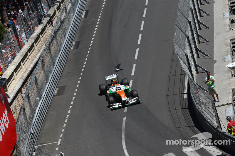 Adrian Sutil, Sahara Force India VJM06 passeert een vogel