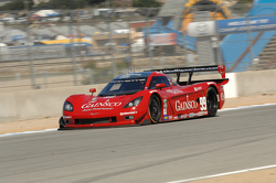#99 GAINSCO/ Bob Stallings Racing Corvette DP: Jon Fogarty, Alex Gurney