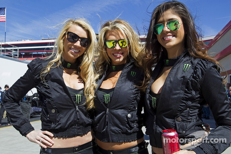 Monster Energy Girls At Bristol