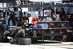 #10 韦恩·泰勒 Racing 雪佛兰克尔维特 DP 雪佛兰: 马克斯·安杰莱利, 里基·泰勒, 乔丹·泰勒