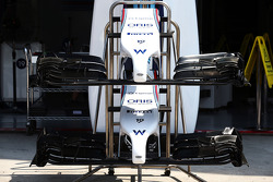 Williams FW36 ön kanat