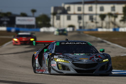 Кэтрин Легг, Алвару Парент, Трент Хиндман, Michael Shank Racing, Acura NSX (№86)