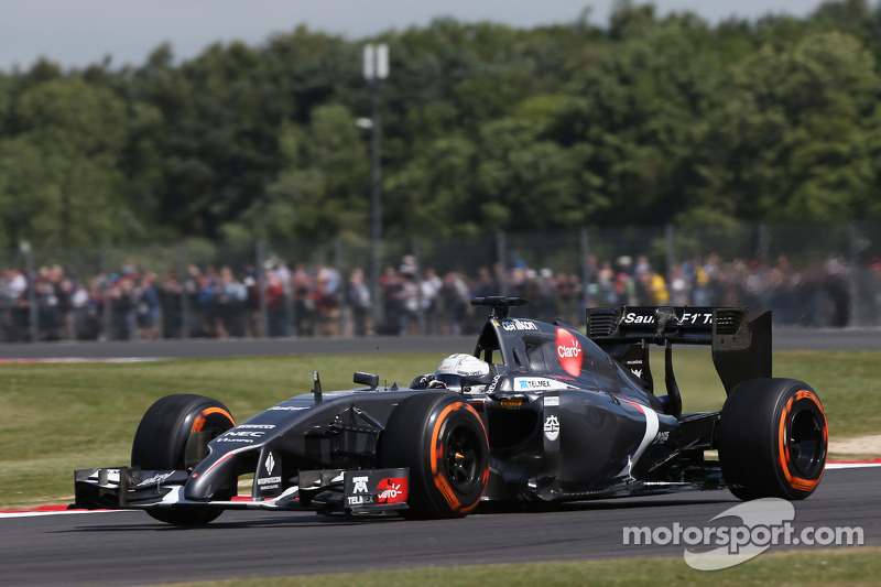 Giedo van der Garde, Sauber C33, Terzo pilota