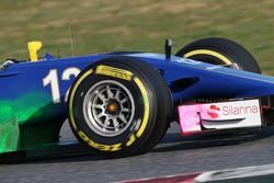 Felipe Nasr, Sauber C34, fährt mit Flow-Viz-Farbe