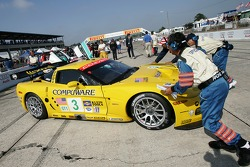 #3 Corvette Racing Corvette C6-R: Ron Fellows, Johnny O'Connell, Max Papis takes position on the starting grid