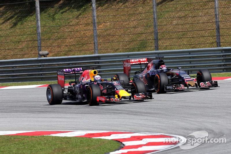 Daniel Ricciardo, Red Bull Racing and Max Verstappen, Scuderia Toro Rosso
