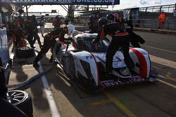 #3 Team LNT Ginetta Nissan : Chris Hoy, Charles Robertson