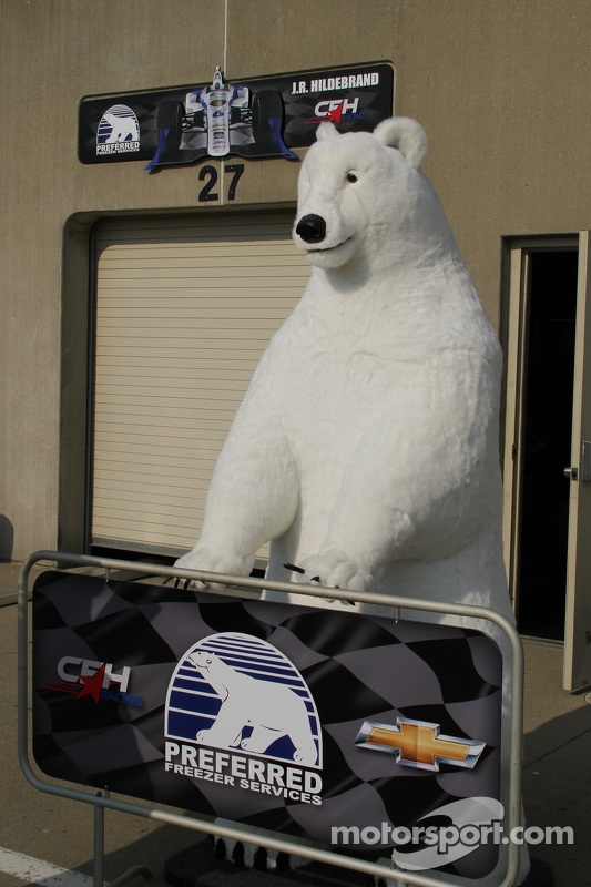 一只北极熊俯瞰车库