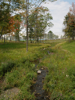 Landscape near turn 6