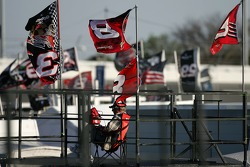 A lonely fan among the flags at Daytona