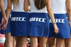 Jeunes femmes WTCC
