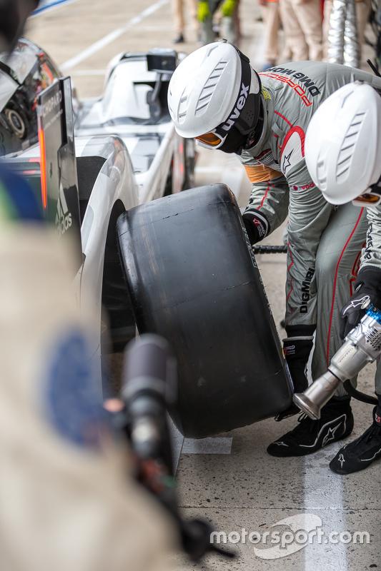 Membro da Porsche Team