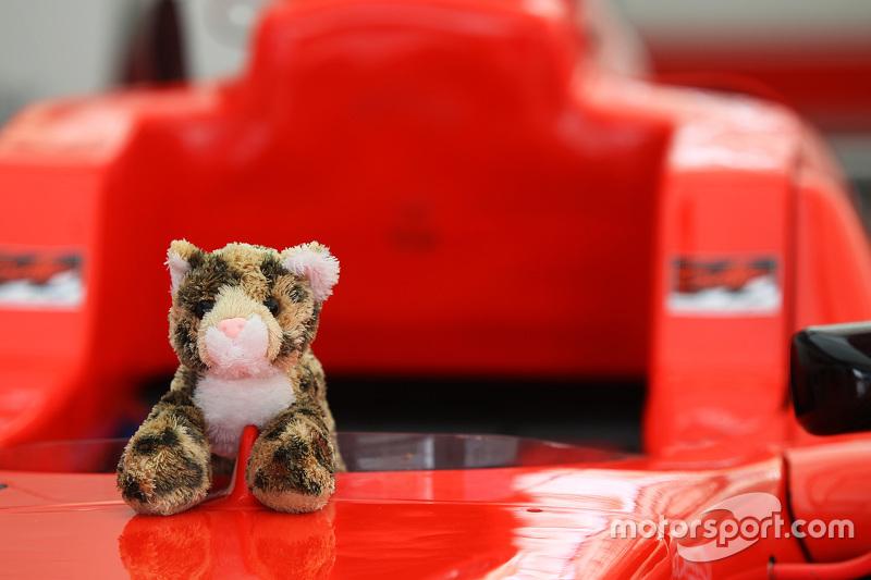 Mainan kucing pada mobil Kevin Ceccon, Arden International
