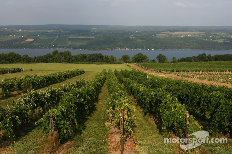 One of the many wineyards on Seneca Lake in the Watkins Glen area