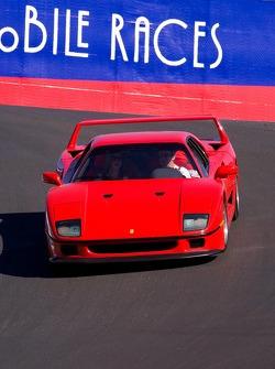 Ferrari F40's