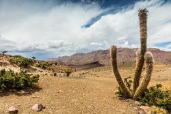 L'atmosphère bolivienne