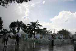 Paddock after rain