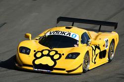 #12 VIP Petfoods, Mosler MT900 GT3: Klark Quinn