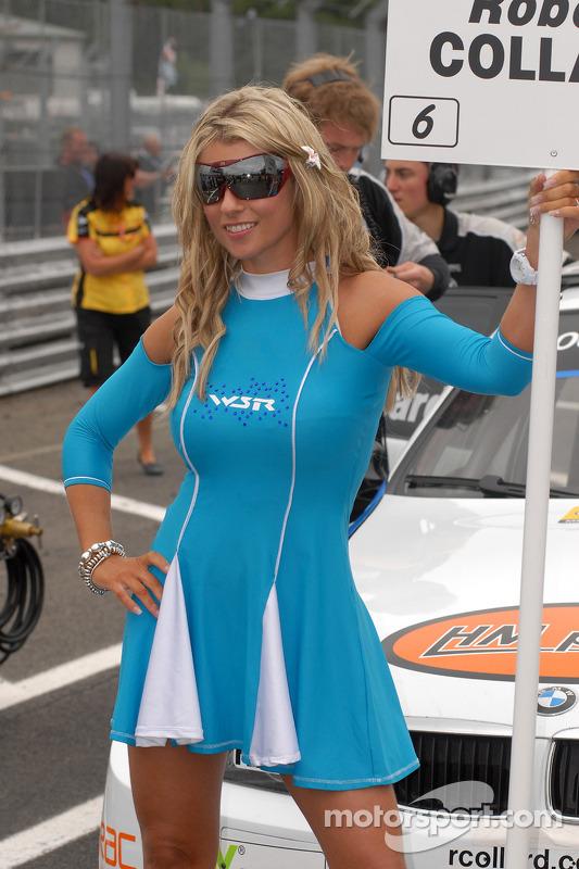 Rob Collard's gridgirl