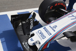Williams nose and front wing detail
