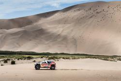 Cyril Despres, Peugeot Total