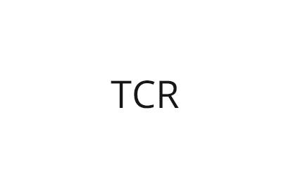TCR国际房车系列赛