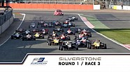 3rd race of the 2015 season / 3rd race at Silverstone