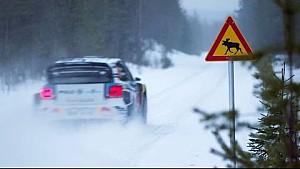Älgtest | Rally Sweden | WRC 2016: VW RALLYTHEWORLD