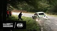 Ралли Великобритания: Столкновение с деревом в исполнении Эсапекки Лаппи