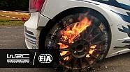 WRC 2016 Özeti - Almanya Rallisi