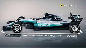 Mercedes W08: Rückspiegel