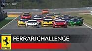 Ferrari Challenge Avrupa, Valencia 2017 - Pirelli Trofeo - 1. Yarış