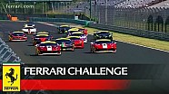 Ferrari Challenge Europe - Coppa Shell Pirelli Race 1 at Budapest